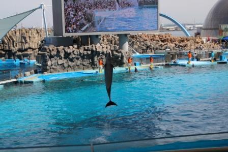 名古屋港水族館7.jpg