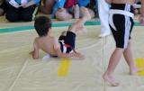 相撲1.jpg